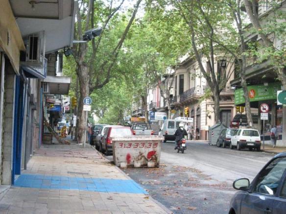 Uma rua arborizada em pleno Centro